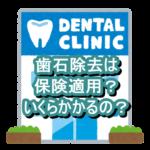歯石除去に行ってきました!保険適用?実際の費用、効果は?