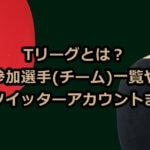 Tリーグとは?参加選手(チーム)一覧や選手のツイッターアカウントまとめ!